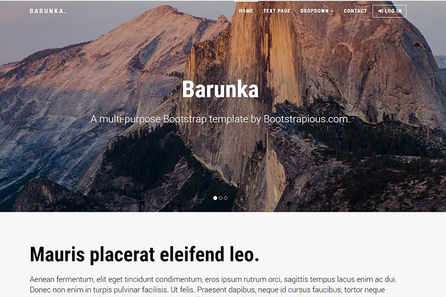 Barunka - Multipurpose Template